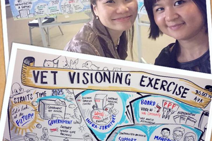 VET Visioning Exercise for Singapore VET Association